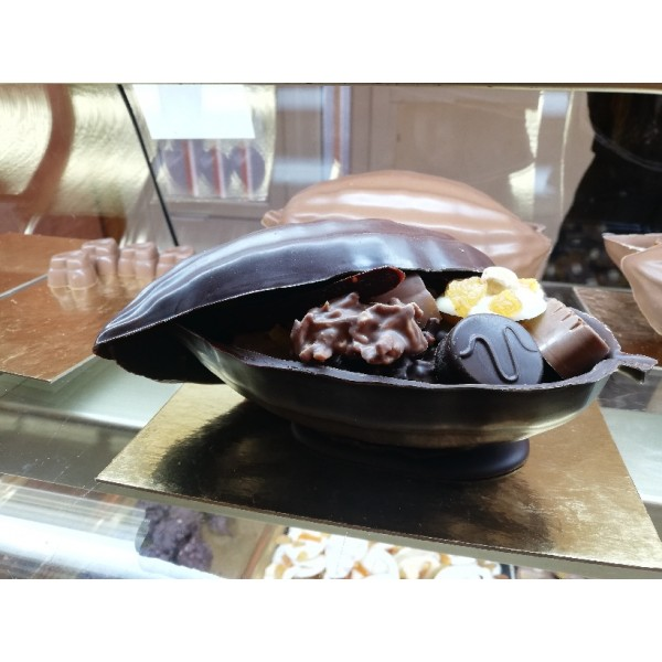 cabosse chocolat noir